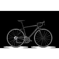 FOCUS Vélo de Route IZALCO RACE 9.8 Noir 2019